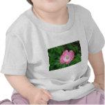 Amapola rosada camiseta