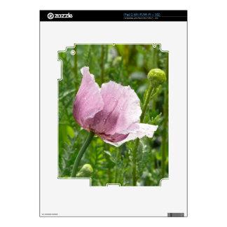 Amapola rosada dulce con las gotas de agua calcomanías para iPad 2