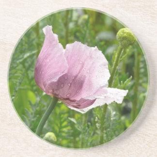 Amapola rosada dulce con las gotas de agua posavasos personalizados