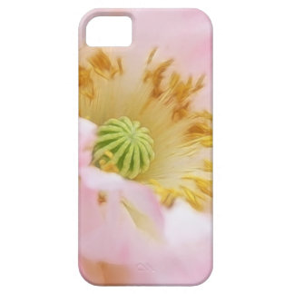 Amapola rosada etérea iPhone 5 fundas