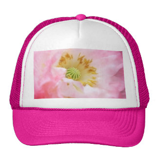 Amapola rosada etérea gorras de camionero