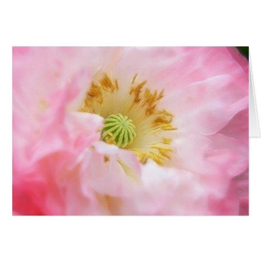 Amapola rosada etérea tarjeta de felicitación