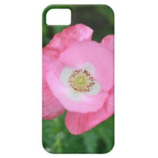 Amapola rosada funda para iPhone SE/5/5s