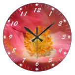 Amapola rosada polvorienta relojes