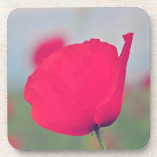 Amapola rosada posavasos