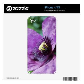 Amapola violeta iPhone 4S calcomanía