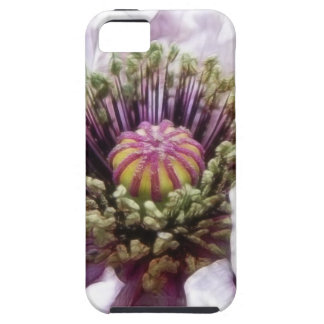 Amapola - volantes púrpuras elegantes iPhone 5 fundas
