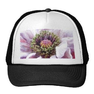 Amapola - volantes púrpuras elegantes gorras de camionero