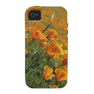 Amapolas anaranjadas que soplan en el viento iPhone 4/4S carcasa