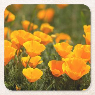 Amapolas de California, parque de estado de Posavasos Desechable Cuadrado