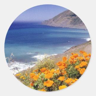 Amapolas de California Pegatinas Redondas