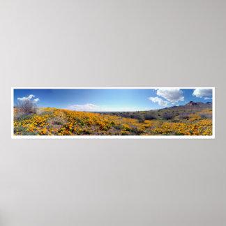 Amapolas de oro mexicanas - montañas de Franklin Póster