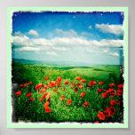 Amapolas en Toscana Impresiones