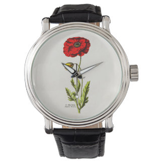 Amapolas florales rojas de la flor salvaje de la reloj de mano