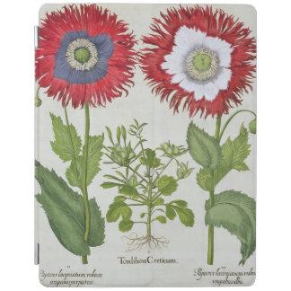 Amapolas ornamentales, del 'Hortus el Eystettensis Cubierta De iPad