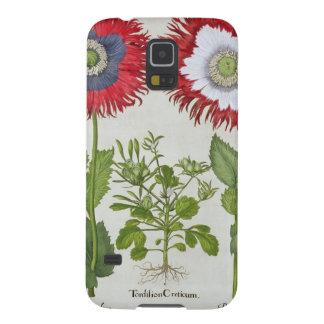 Amapolas ornamentales, del 'Hortus el Eystettensis Funda De Galaxy S5