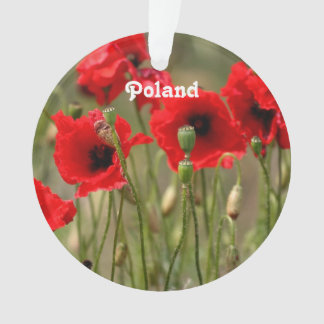 Amapolas rojas en Polonia
