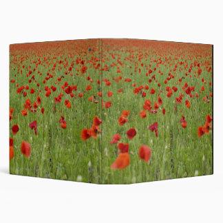 """Amapolas rojas que florecen en campo carpeta 1 1/2"""""""