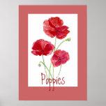 Amapolas rojas y rosadas, jardín, flores, florales posters