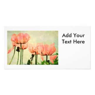 Amapolas rosadas y remolinos florales tarjetas fotográficas