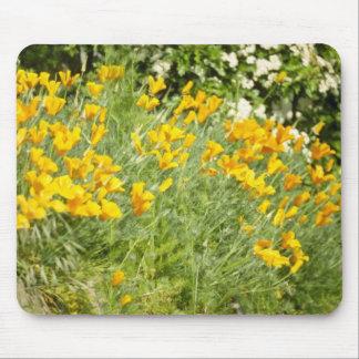 amapolas salvajes amarillas en flores del carril d tapete de raton