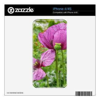 Amapolas violetas/amapolas púrpuras calcomanías para el iPhone 4S