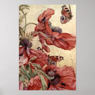 Amapolas y mariposas del vintage poster