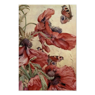 Amapolas y mariposas del vintage póster
