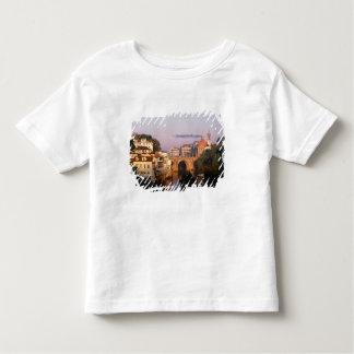 Amarante, Portugal Toddler T-shirt