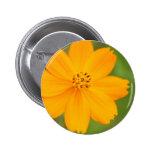 Amarela de Diversos Flor Pin