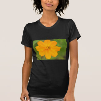 Amarela de Diversos Flor T Shirts