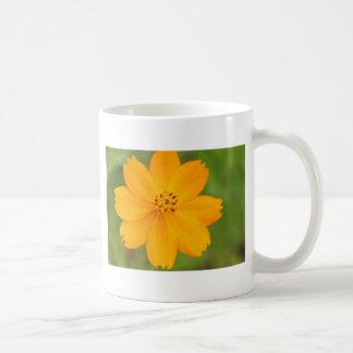Amarela de Diversos Flor Tazas