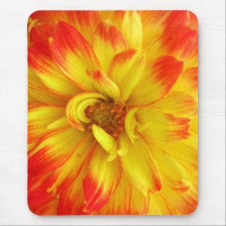 Amarillo a la flor anaranjada roja mousepad