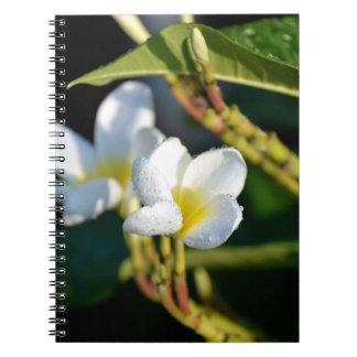 amarillo blanco de la flor de los leus spiral notebooks