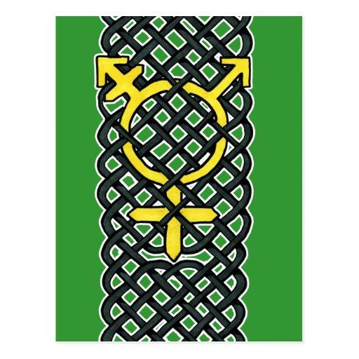 Amarillo céltico del símbolo del transexual postales
