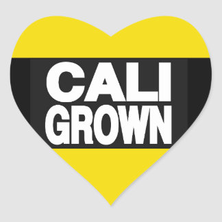 Amarillo crecido Cali 2 Pegatina En Forma De Corazón
