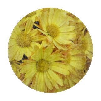Amarillo de la planta del grupo del crisantemo tablas para cortar