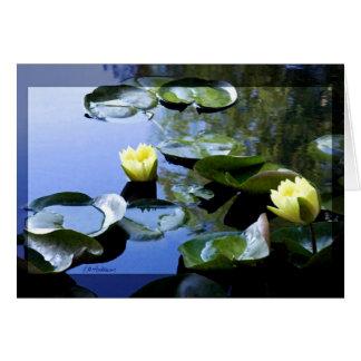 Amarillo de Waterlily Tarjeta De Felicitación