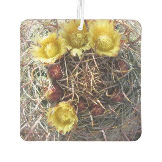 Amarillo del anzuelo de la planta del cactus de