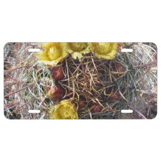 Amarillo del anzuelo de la planta del cactus de placa de matrícula