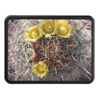 Amarillo del anzuelo de la planta del cactus de tapa de remolque
