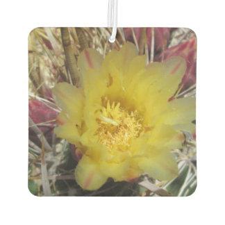 Amarillo del anzuelo del cactus de barril