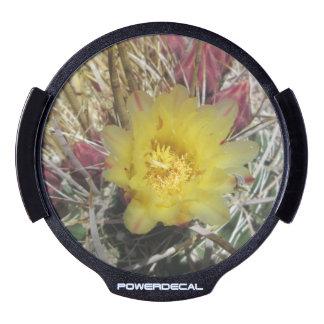 Amarillo del anzuelo del cactus de barril pegatina LED para ventana