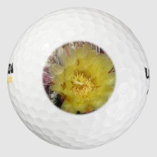 Amarillo del anzuelo del cactus de barril pack de pelotas de golf