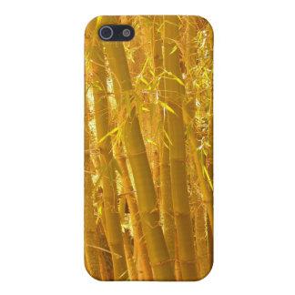 Amarillo del bambú iPhone 5 carcasa