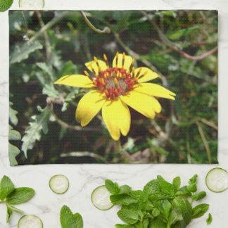 Amarillo del lyrata de Berlandiera de la flor del Toalla De Cocina