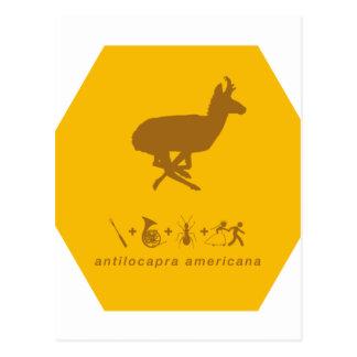 amarillo del pronghorn y brown.png tarjetas postales