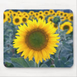 amarillo destaqúese de las flores de la muchedumbr tapete de ratón