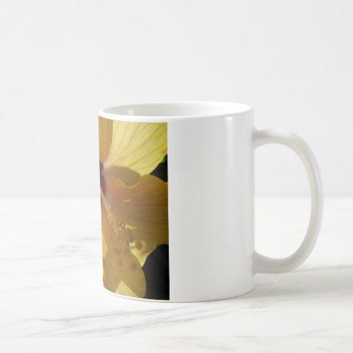 amarillo     grande taza básica blanca