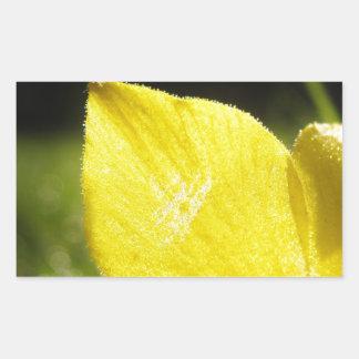 ^ amarillo pegatina rectangular
